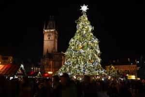 旧市街広場のクリスマスツリー
